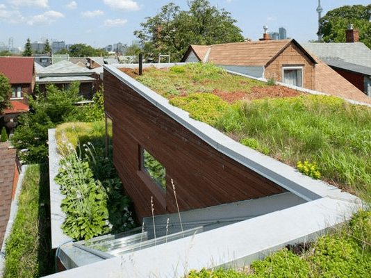 Green Home with plants as a living roof