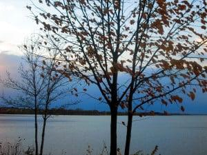 View of lake through trees, because fewer Leaves in Winter Help Open Views so you can Sell Land